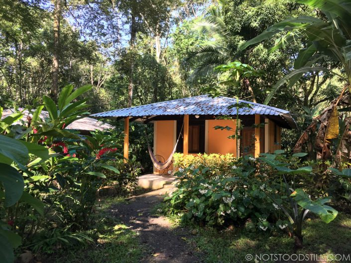 Our jungle cabin in Cahuita.