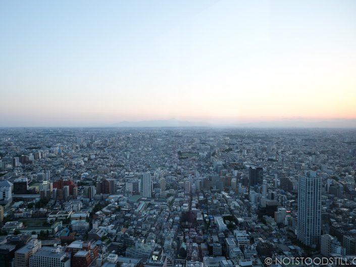 View of Tokyo from above, Mt Fuji makes an appearance in the horizon.